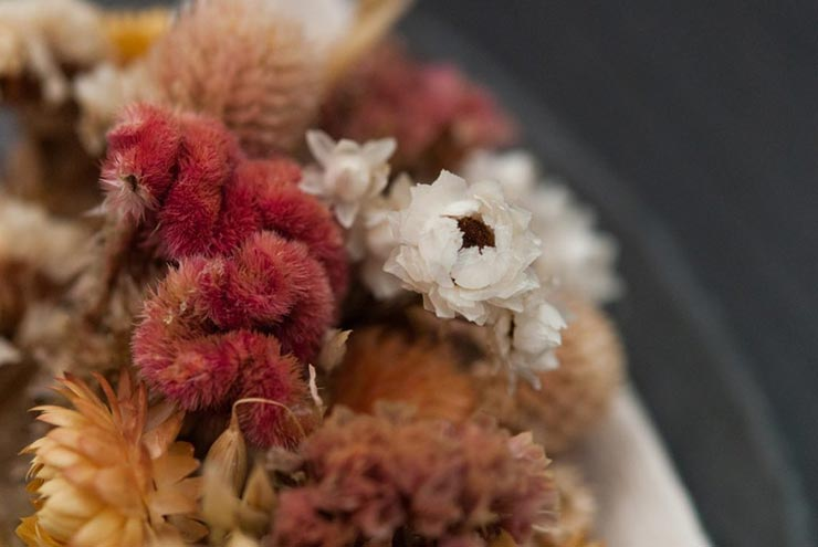 A closeup of white and pink dry flowers.