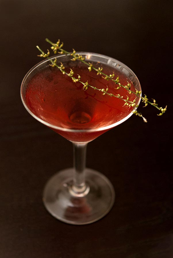 A cocktail in a martini glass, garnished with 2 sprigs of greenery on a dark table.