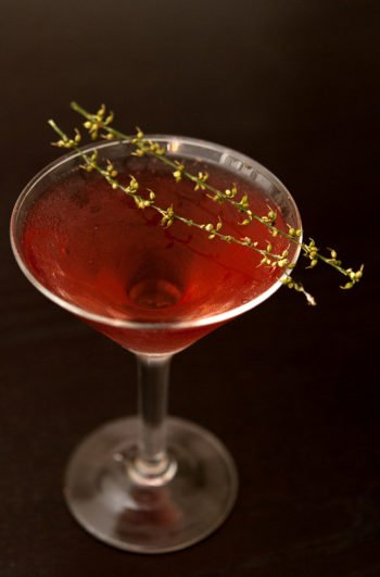 A red cocktail in a martini glass on a black table, garnished with 2 dry sprigs of a dry, seeded grass.