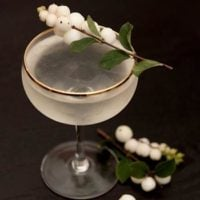A cocktail, garnished with white berries on the edge, with a few berries at its base.