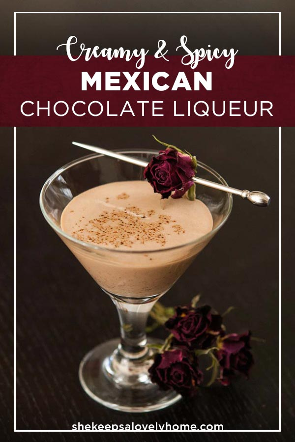 Add a little creamy spice to your cocktails with thisdecadent, chocolaty, homemade,spicy Mexican chocolate liqueur! It also makes a beautiful Christmas gift! #mexican, #cocktails, #spicy, #christmasideas, #christmasfood, #presentidea