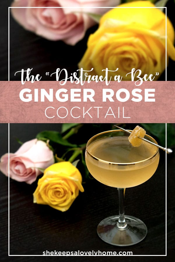 This Ginger Rose Cocktail I call a