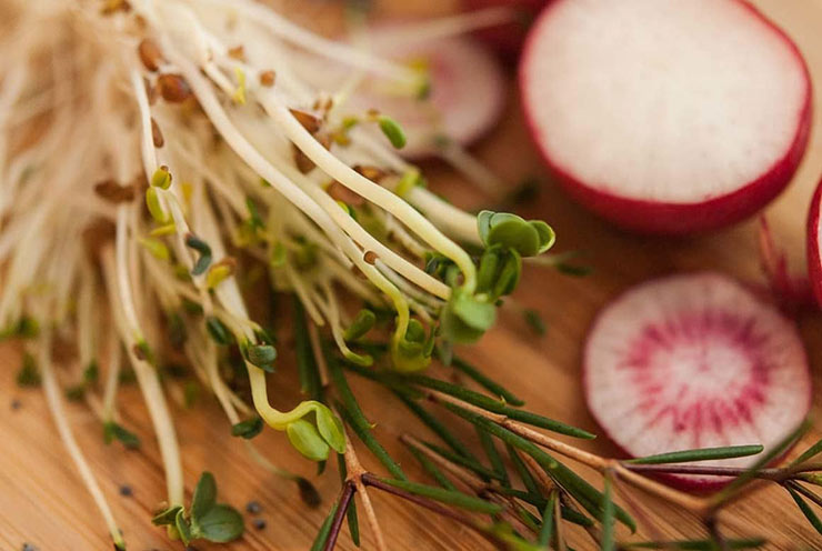 A bunch of sprouts and sliced radishes on a wooden cutting board.