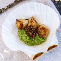 A small shell on a plate containing 3 small scallops, pesto cream and mustard caviar.