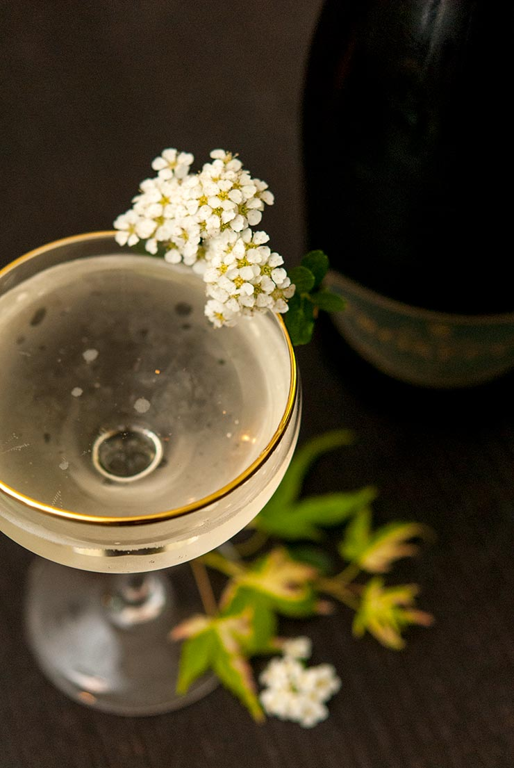 A coup glass cocktail, garnished with white flowers on a black table, sprinkled with small green leaves. A prosecco bottle in the background.