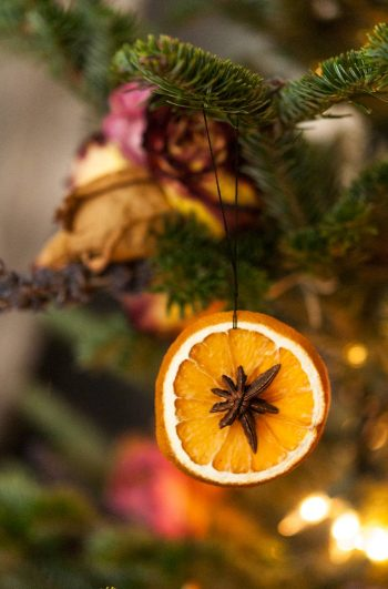 A dried orange slice with star anise in the center hanging on a christmas tree.