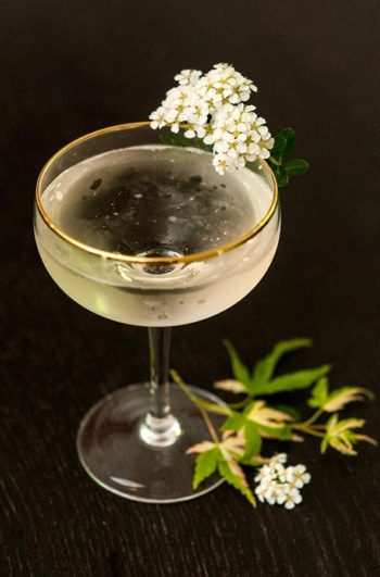 A Sparkling Elderflower Cocktail, garnished with flowers.