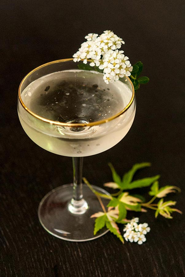 A Sparkling Elderflower Cocktail on a table, garnished with flowers and a few leaves at its base.