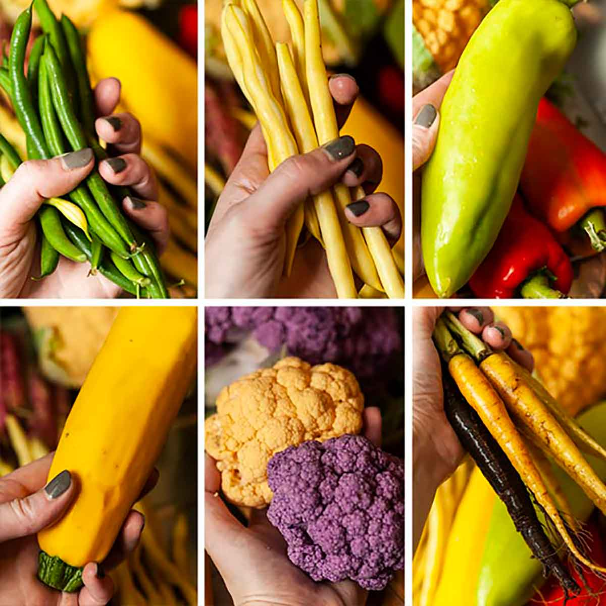 A collage of 6 images of different vegetables.