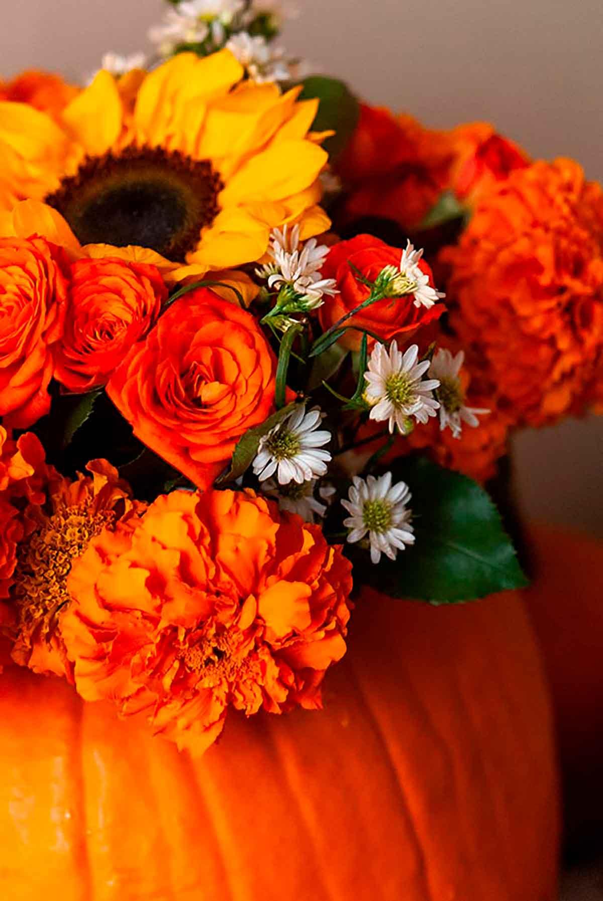 A bouquet of Autumn flowers in a pumpkin.