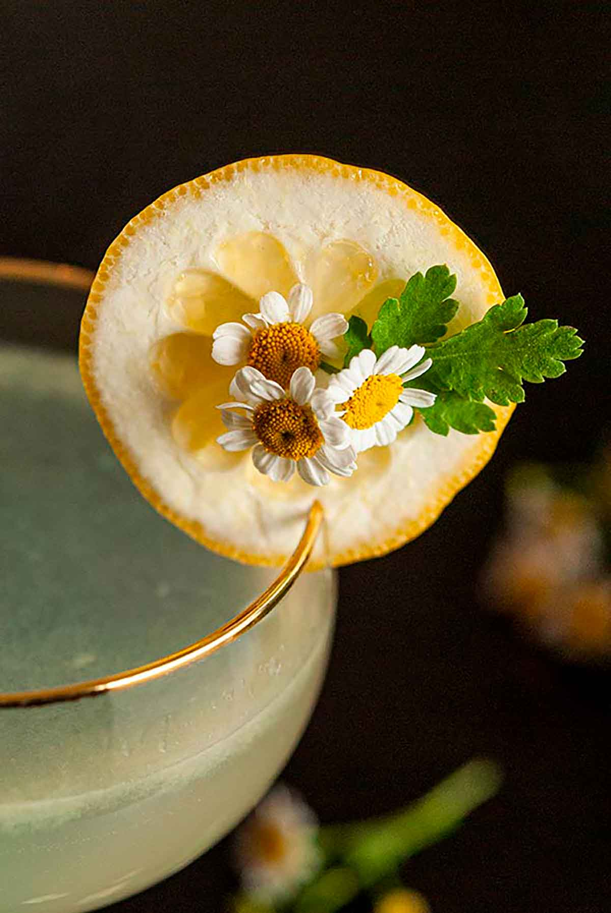 A lemon slice garnish, with daisies in the center, on the edge of a cocktail glass.