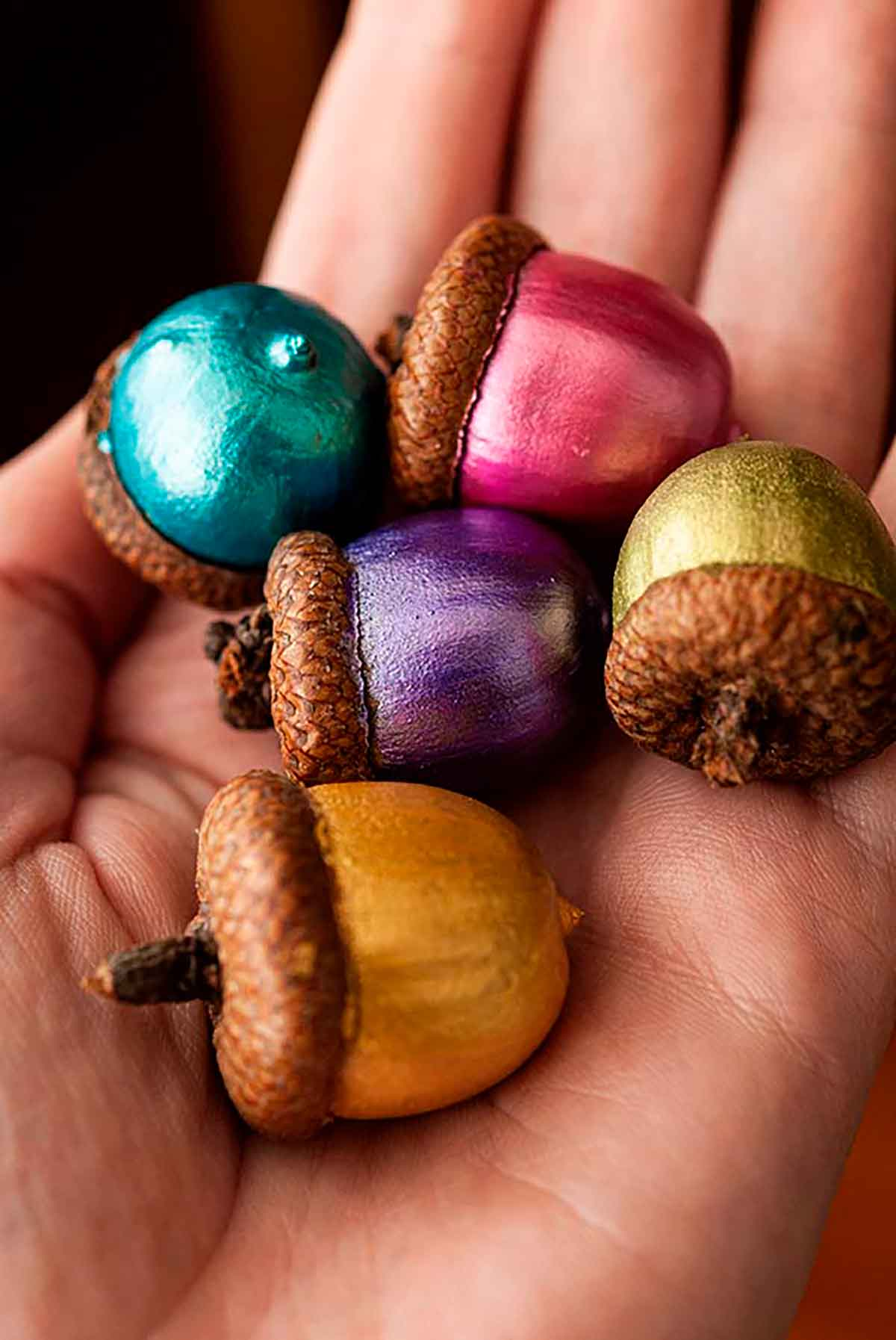 A hand holding 5 painted acorns.