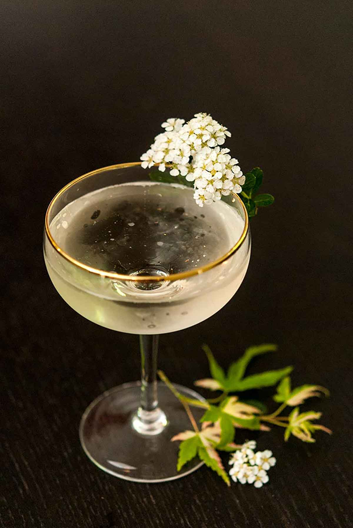 A cocktail in a coup glass, garnished with small flowers, with small autumn leaves at its base on a black table.
