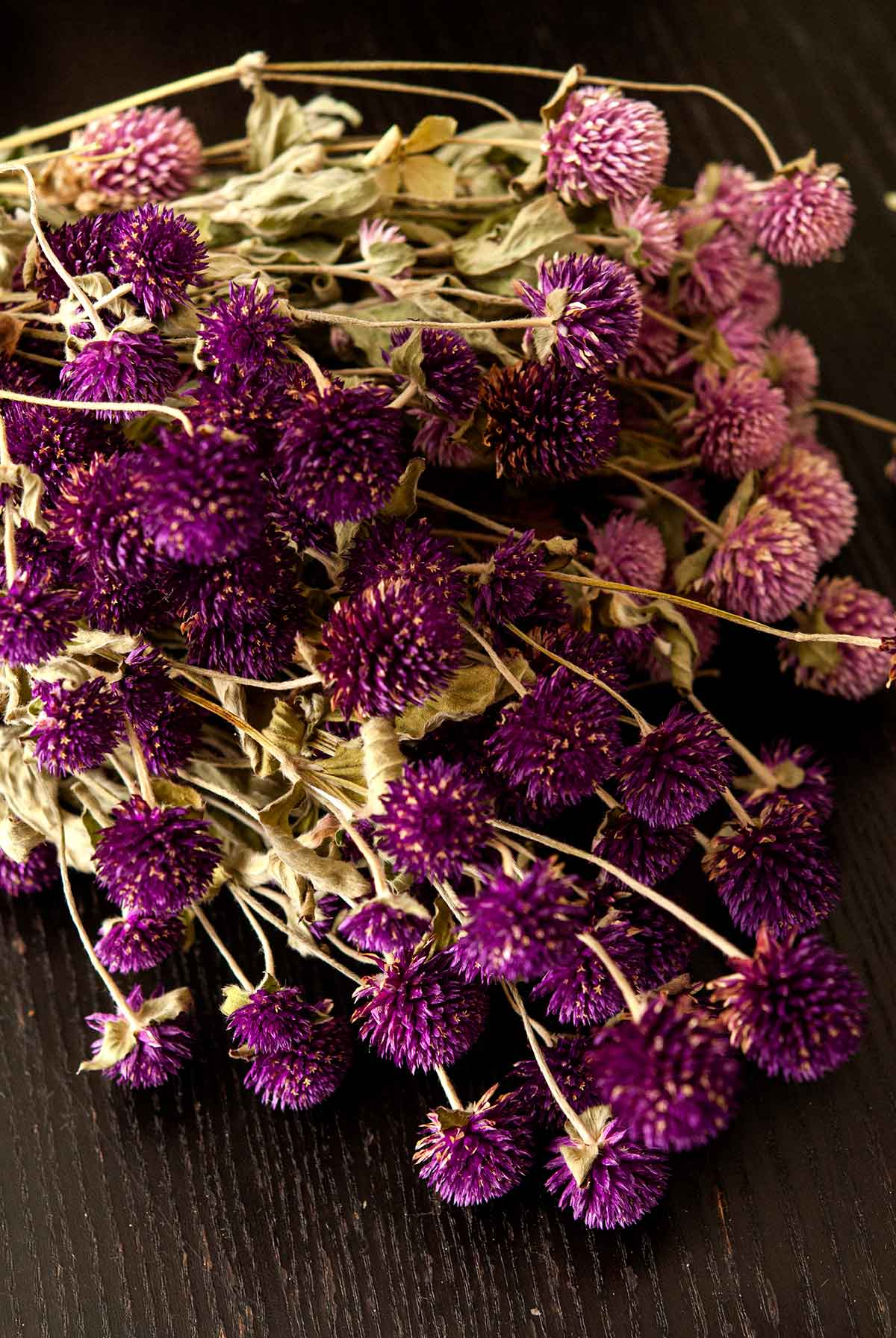 Gomphrena flowers on a table.