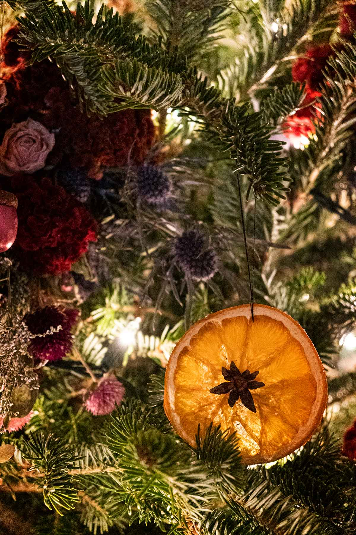 A Christmas ornament made from an orange slice on a tree, beside flowers tucked into the boughs.