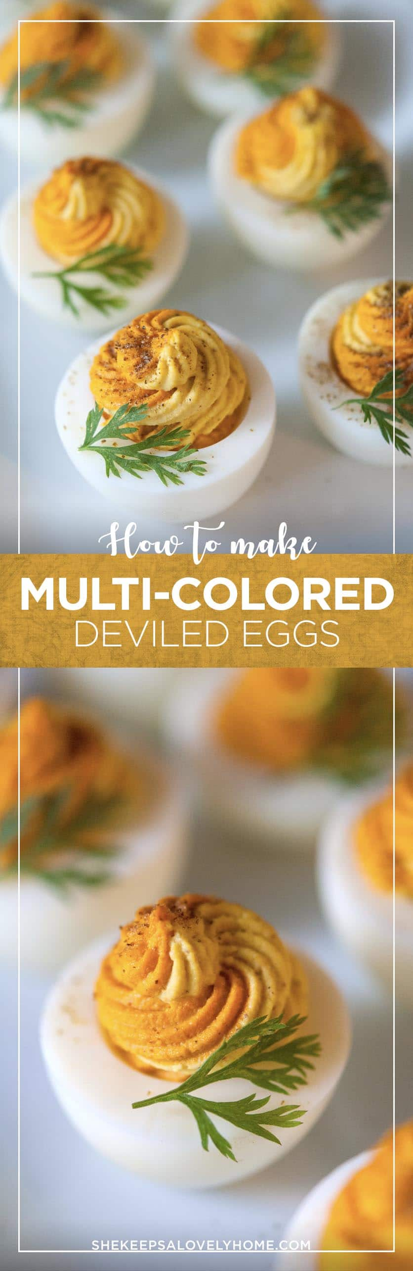 Multi-colored deviled eggs are so simple to create and look so pretty! I'll show you how to create these two-tone deviled eggs in just a few steps.